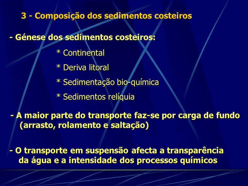 3 - Composição dos sedimentos costeiros