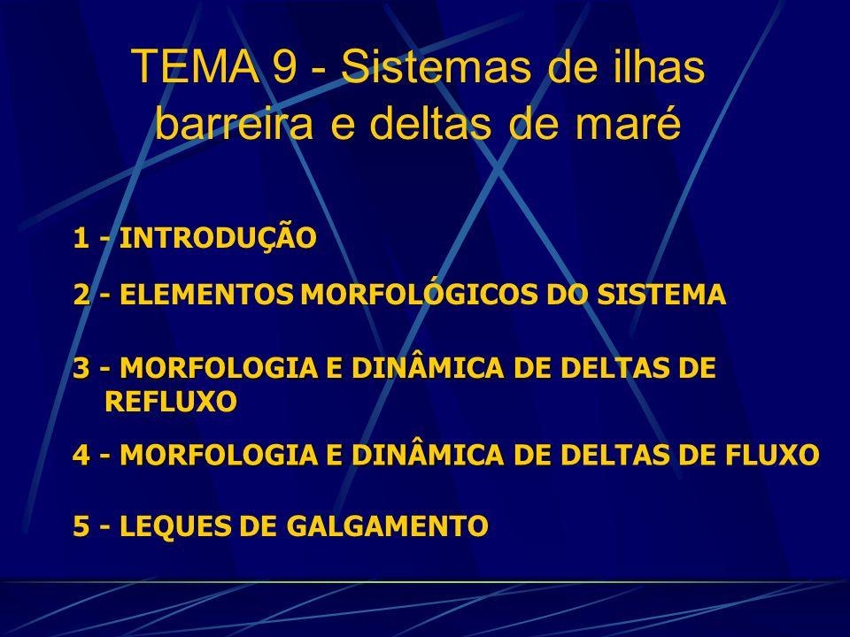 TEMA 9 - Sistemas de ilhas barreira e deltas de maré