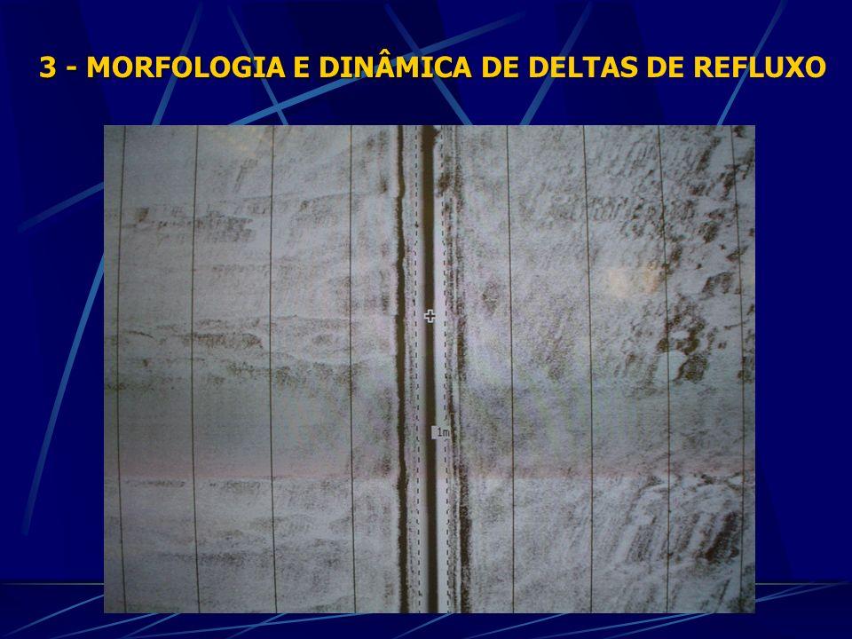 3 - MORFOLOGIA E DINÂMICA DE DELTAS DE REFLUXO