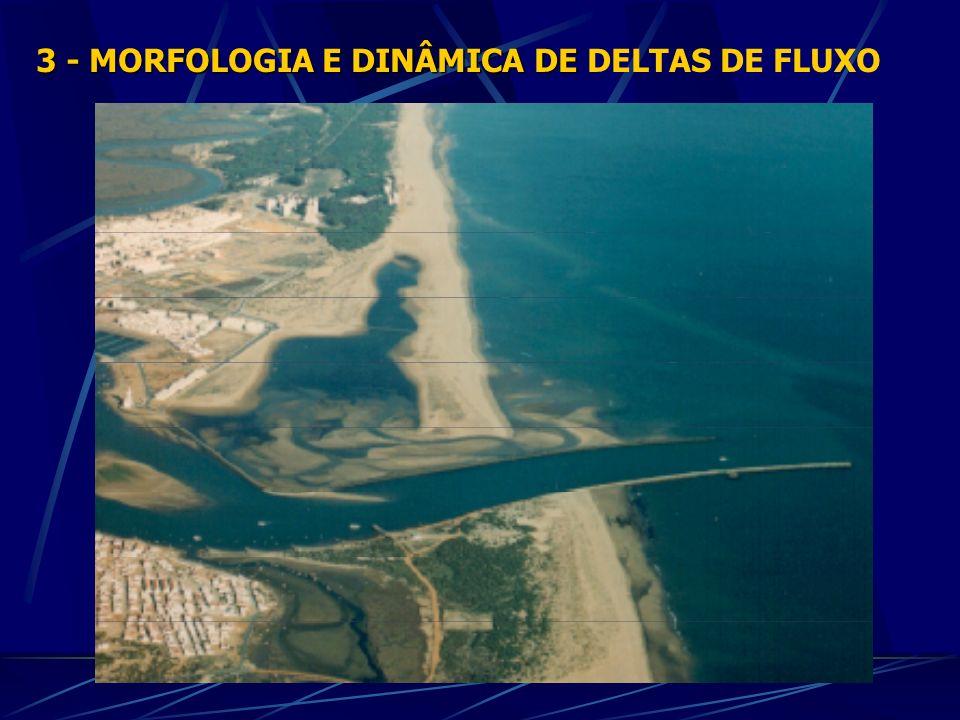 3 - MORFOLOGIA E DINÂMICA DE DELTAS DE FLUXO