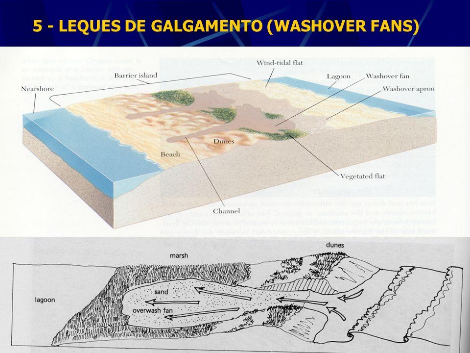 5 - LEQUES DE GALGAMENTO (WASHOVER FANS)