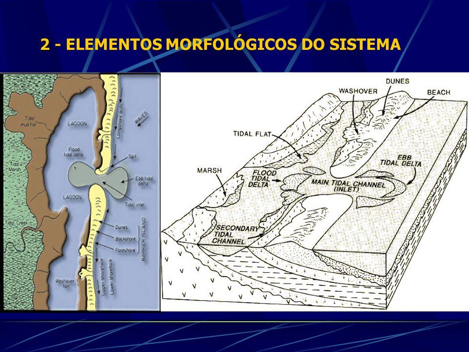 2 - ELEMENTOS MORFOLÓGICOS DO SISTEMA