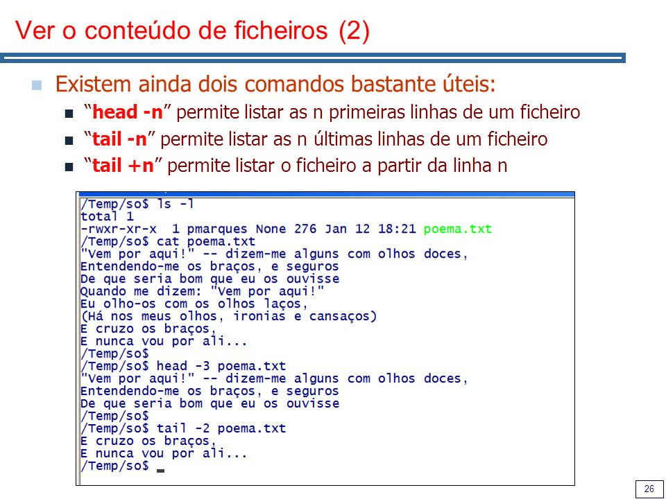 Ver o conteúdo de ficheiros (2)