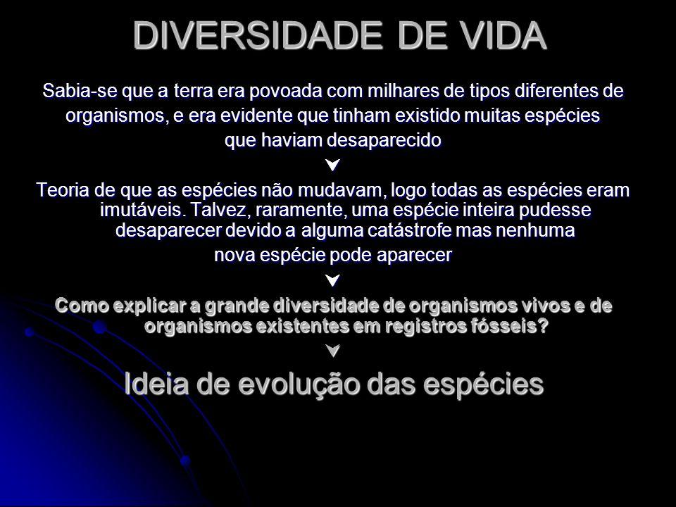 DIVERSIDADE DE VIDA Ideia de evolução das espécies