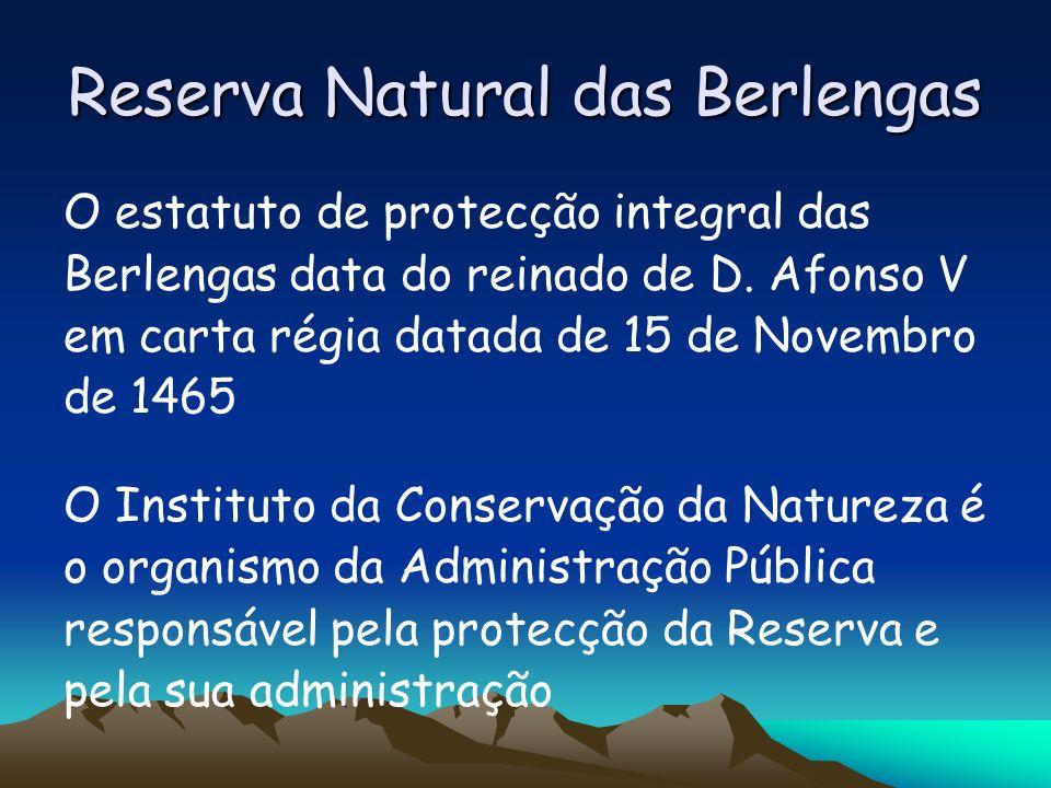 Reserva Natural das Berlengas