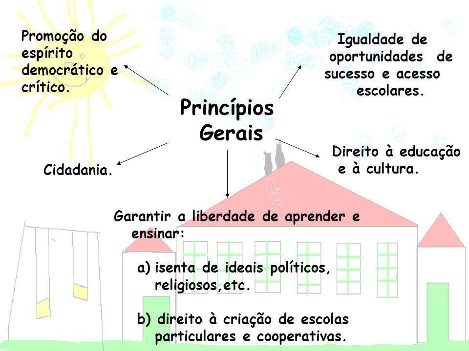 Igualdade de oportunidades de sucesso e acesso escolares.