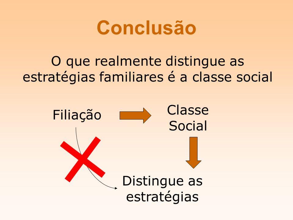 Conclusão O que realmente distingue as estratégias familiares é a classe social. Classe Social. Filiação.