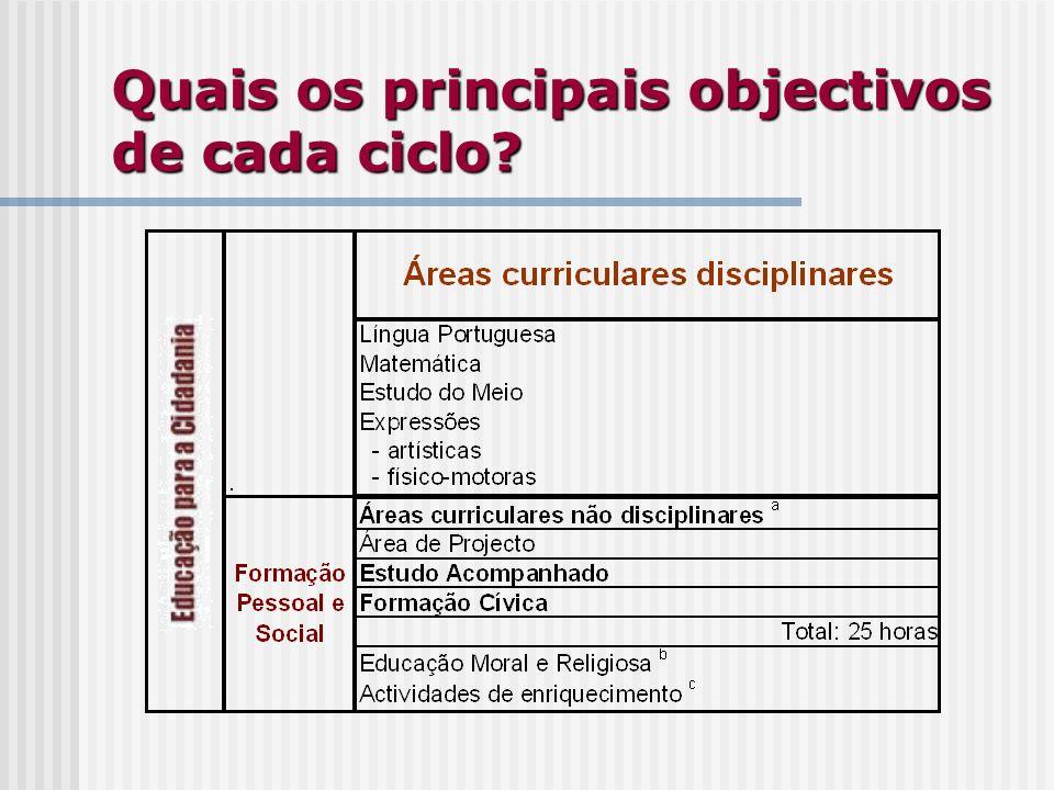 Quais os principais objectivos de cada ciclo