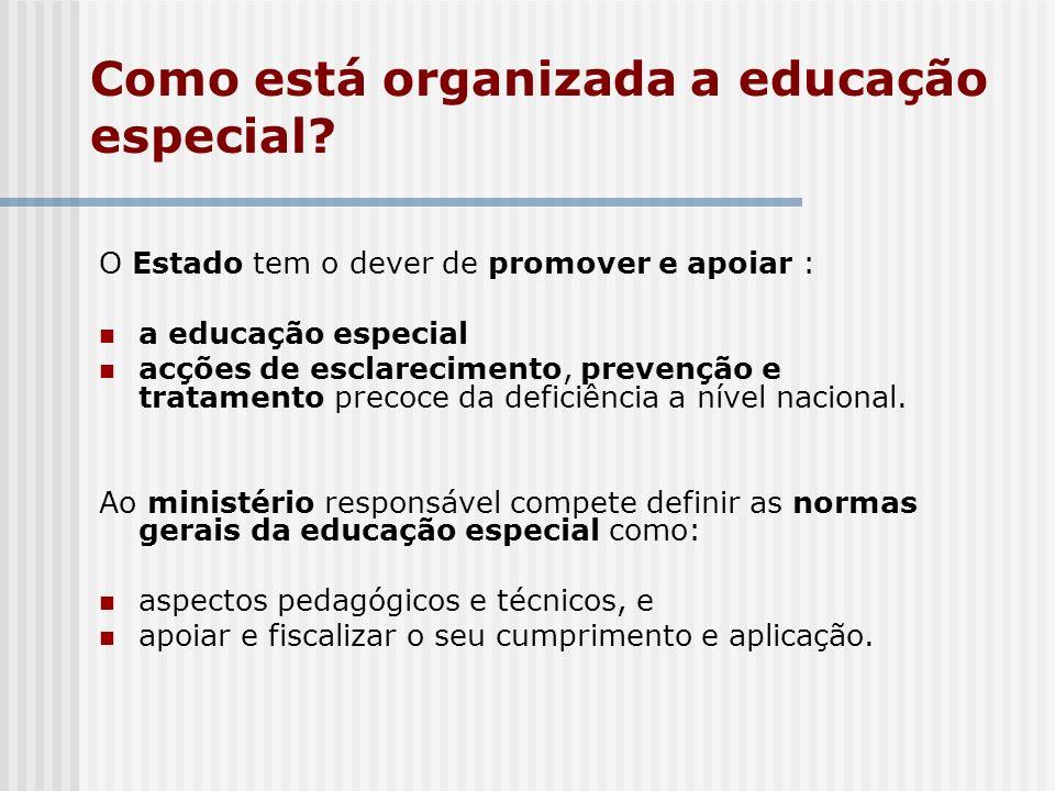 Como está organizada a educação especial