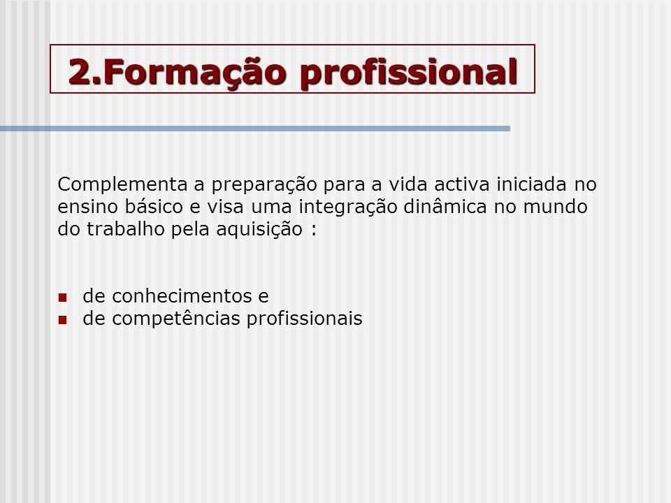 2.Formação profissional