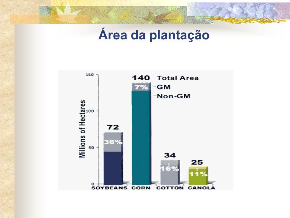 Área da plantação