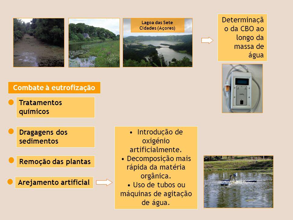 Lagoa das Sete Cidades (Açores)