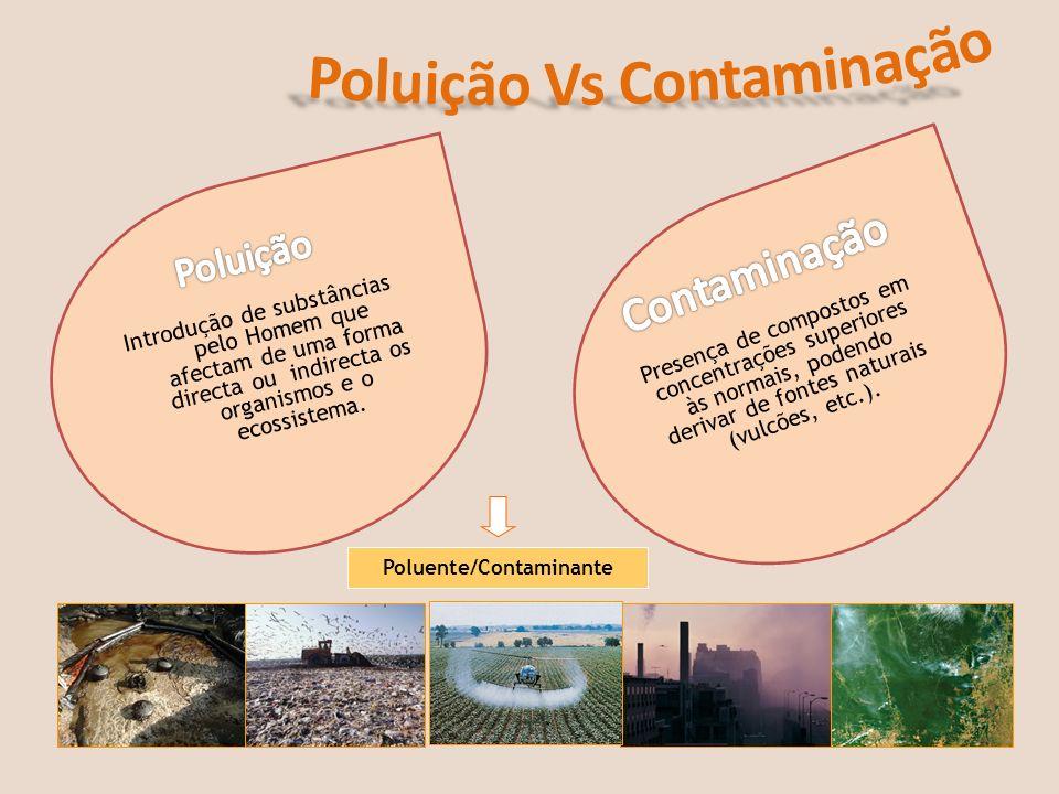 Poluição Vs Contaminação