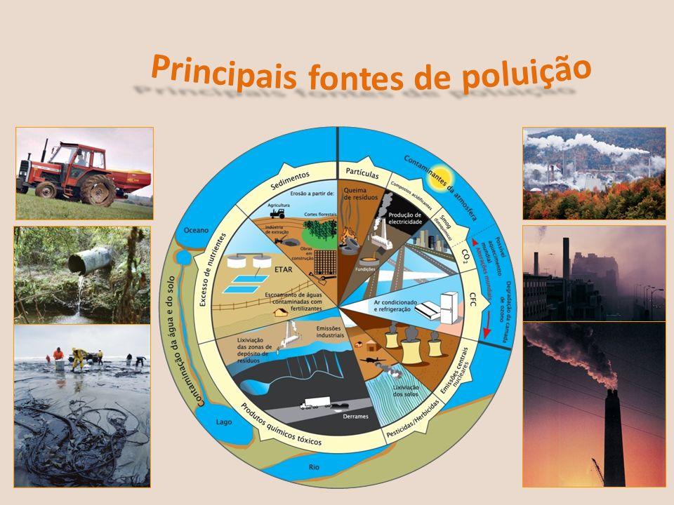 Principais fontes de poluição