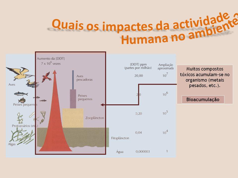 Quais os impactes da actividade Humana no ambiente