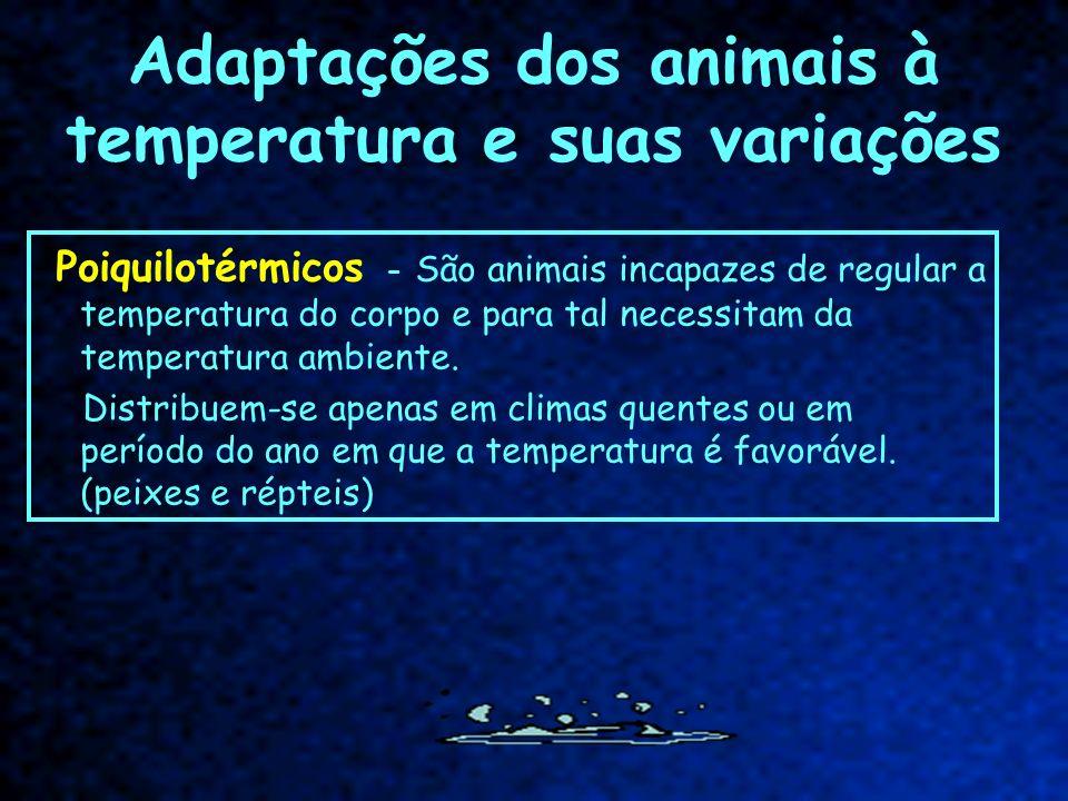 Adaptações dos animais à temperatura e suas variações