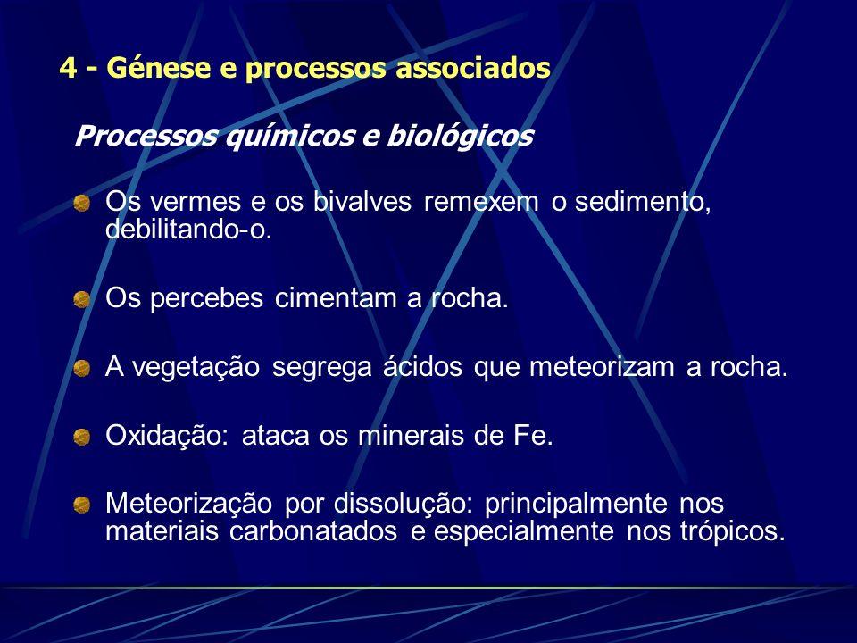 Processos químicos e biológicos