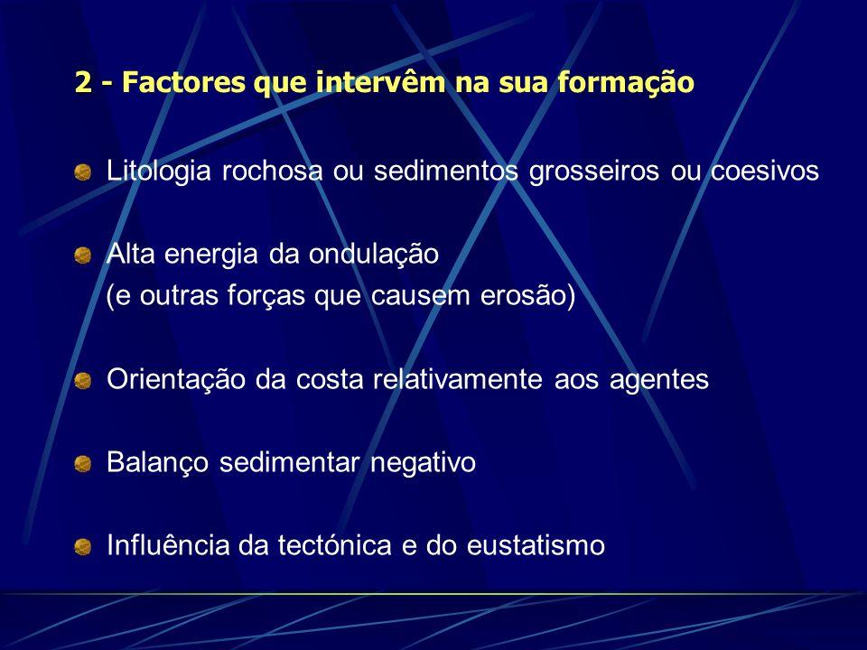 2 - Factores que intervêm na sua formação