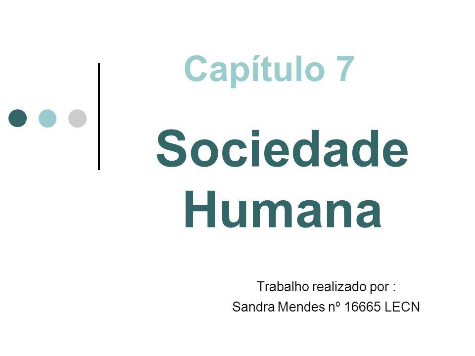 Sociedade Humana Trabalho realizado por : Sandra Mendes nº 16665 LECN
