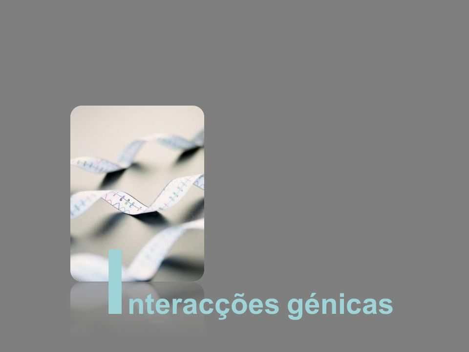 Interacções génicas