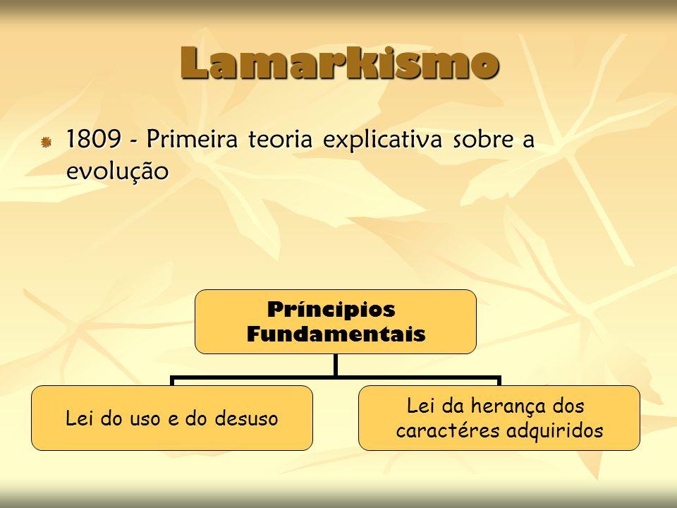 Lamarkismo 1809 - Primeira teoria explicativa sobre a evolução