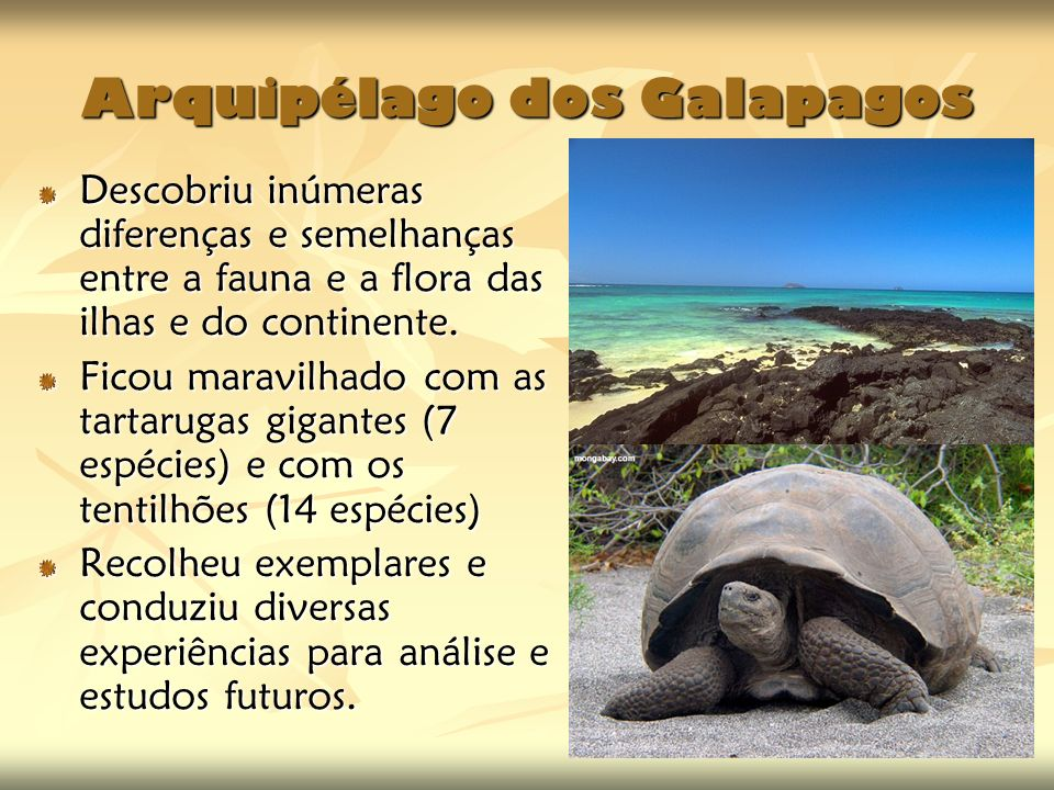 Arquipélago dos Galapagos