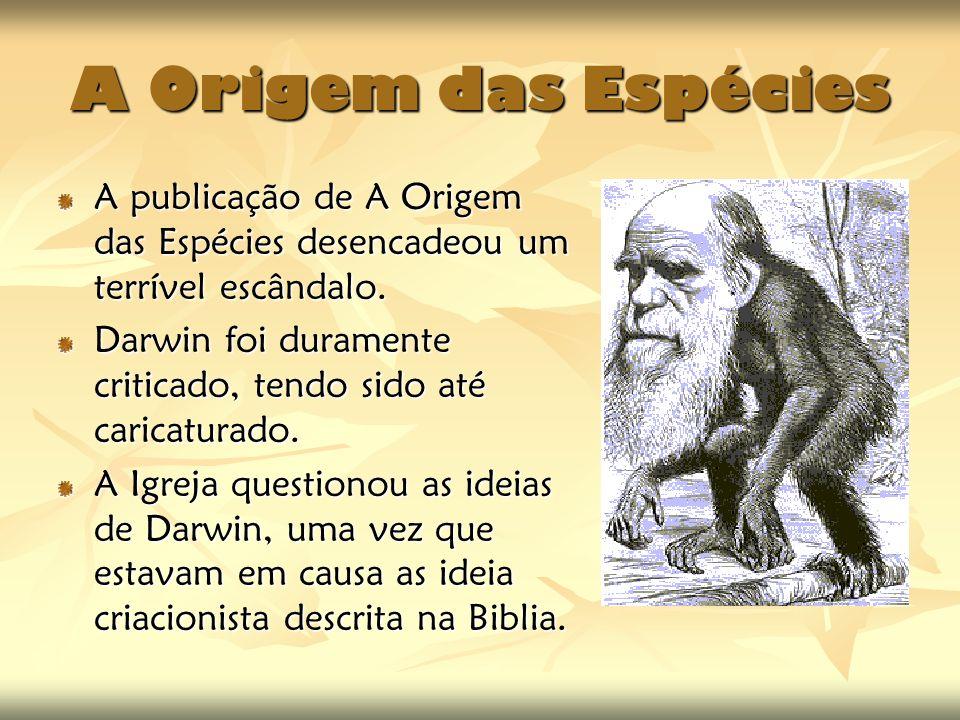 A Origem das Espécies A publicação de A Origem das Espécies desencadeou um terrível escândalo.