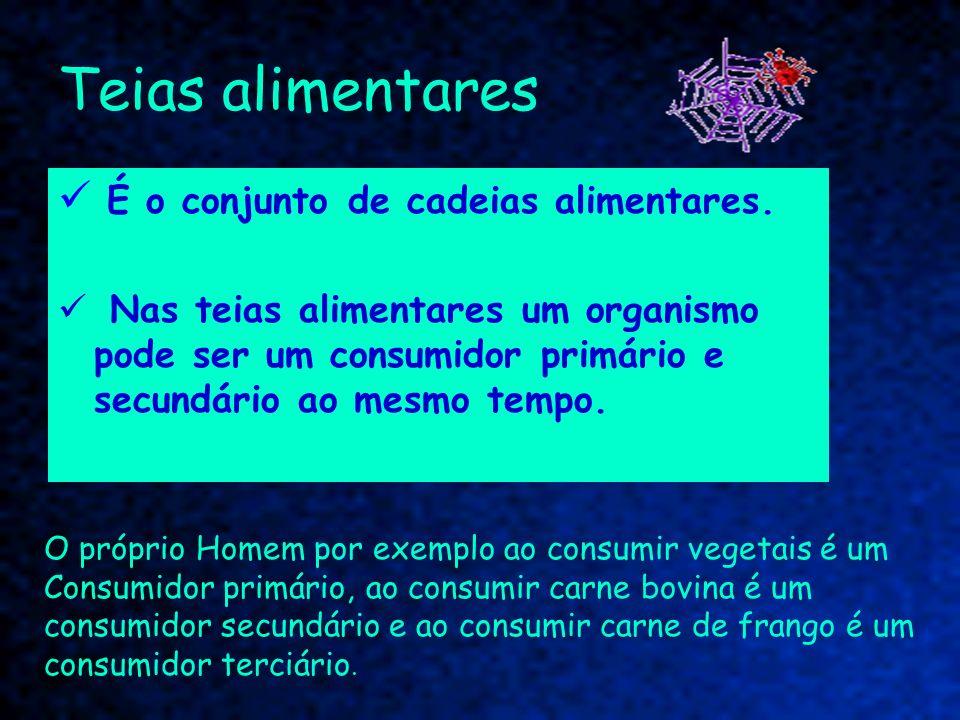 Teias alimentares É o conjunto de cadeias alimentares.