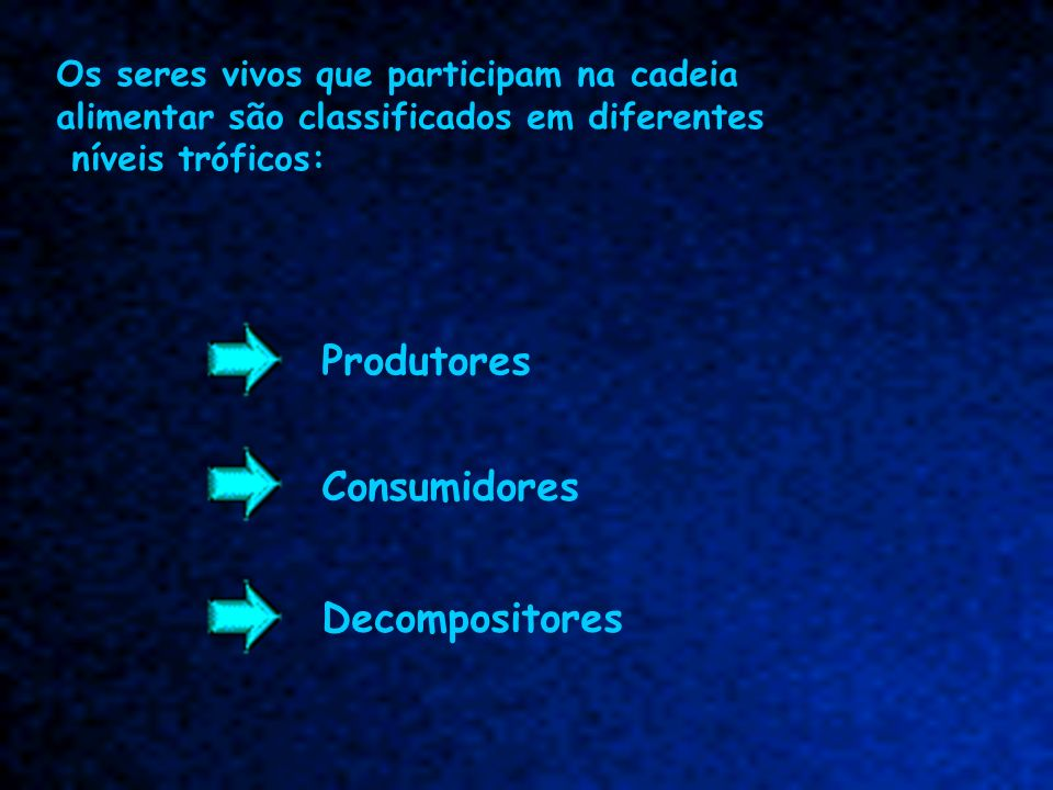 Produtores Consumidores Decompositores