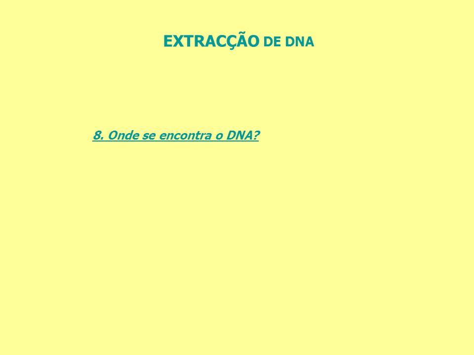 EXTRACÇÃO DE DNA 8. Onde se encontra o DNA