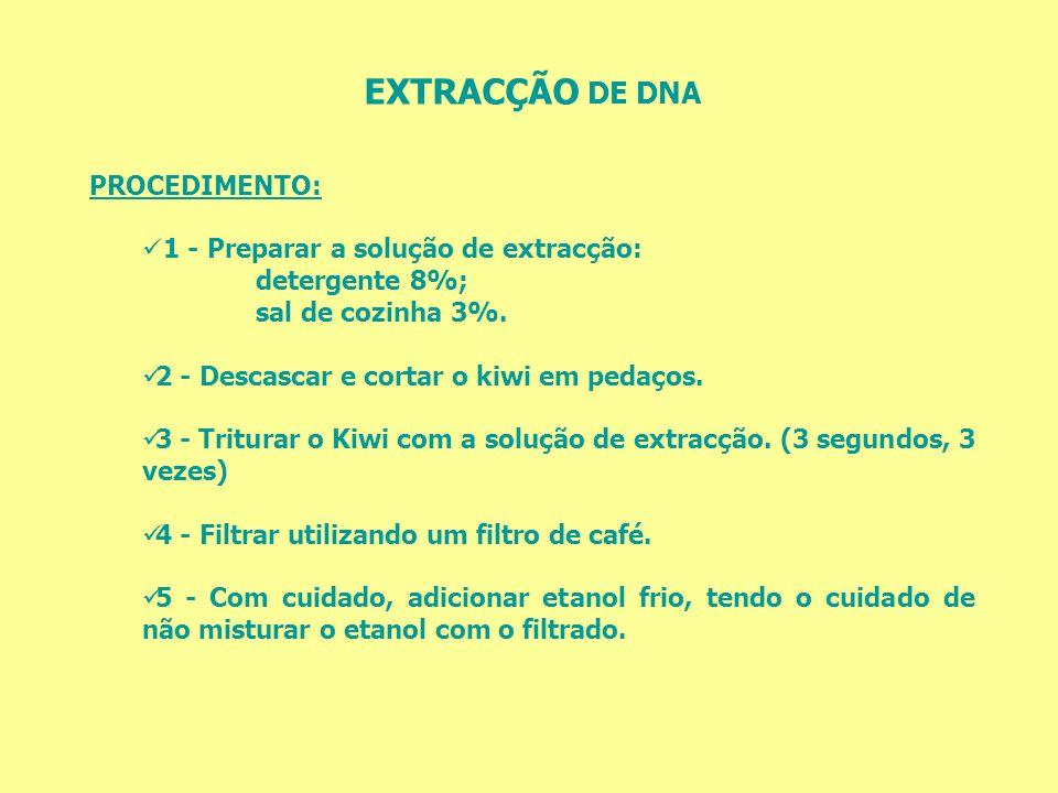 EXTRACÇÃO DE DNA PROCEDIMENTO: 1 - Preparar a solução de extracção: