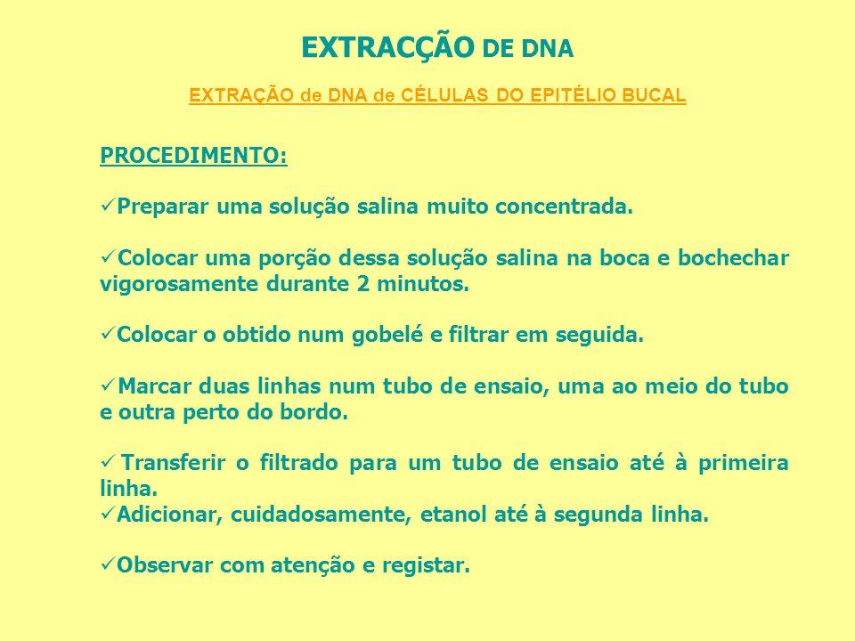 EXTRAÇÃO de DNA de CÉLULAS DO EPITÉLIO BUCAL