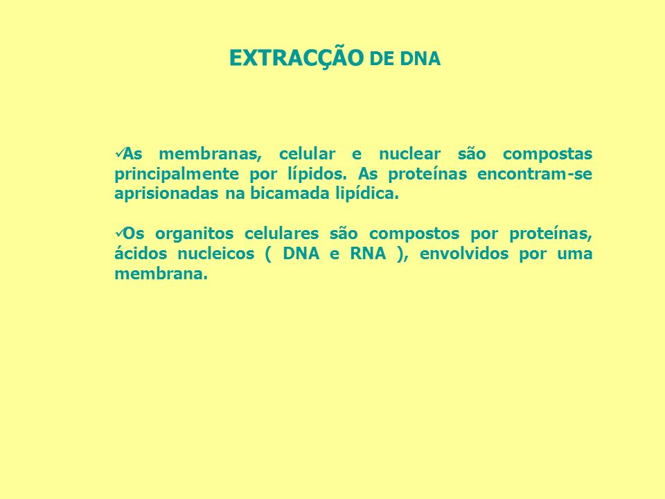 EXTRACÇÃO DE DNA