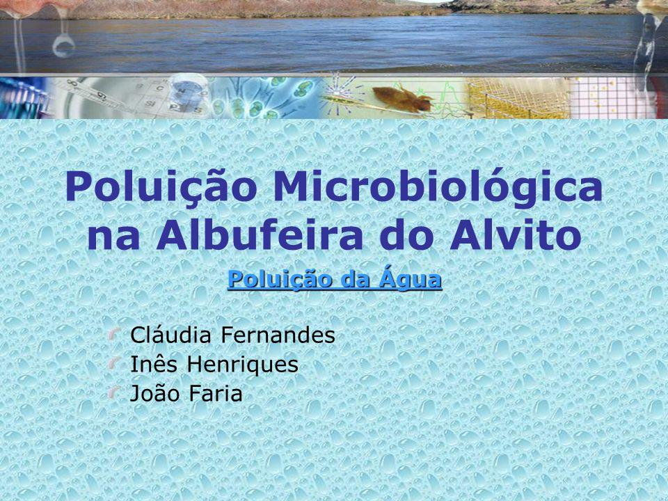 Poluição Microbiológica na Albufeira do Alvito
