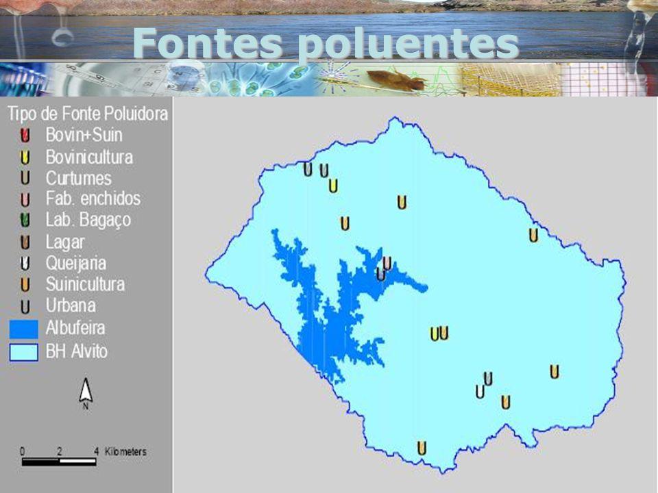 Fontes poluentes