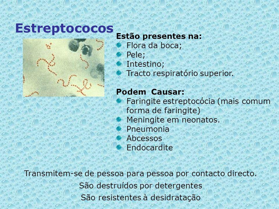 Estreptococos Estão presentes na: Flora da boca; Pele; Intestino;