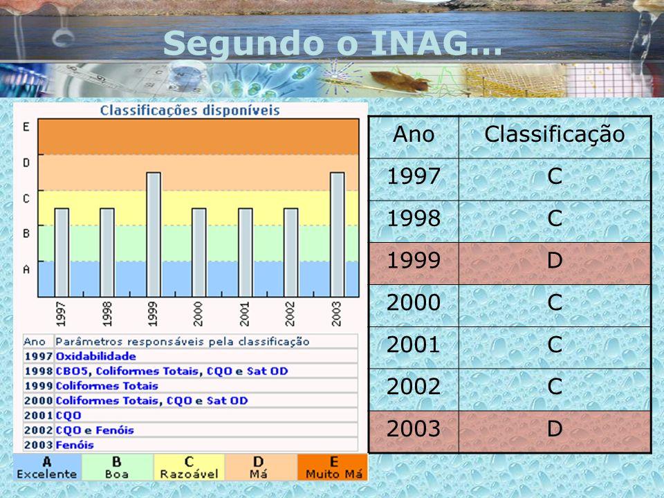 Segundo o INAG… Ano Classificação 1997 C 1998 1999 D 2000 2001 2002