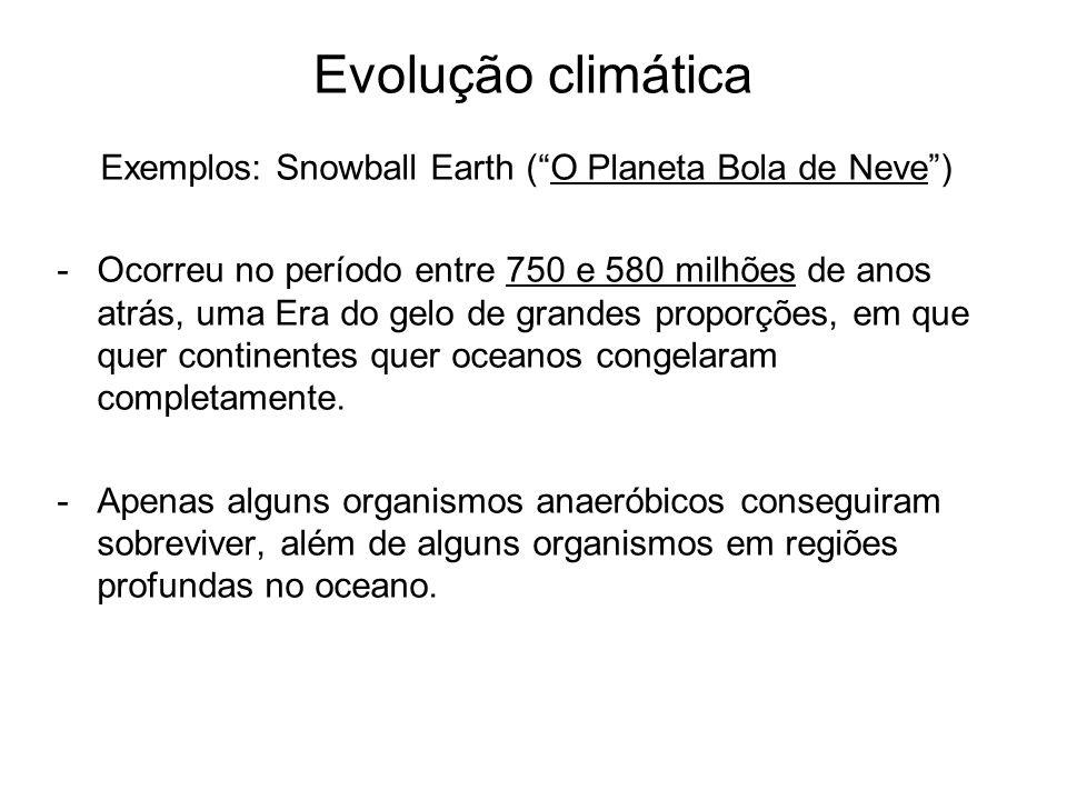 Exemplos: Snowball Earth ( O Planeta Bola de Neve )