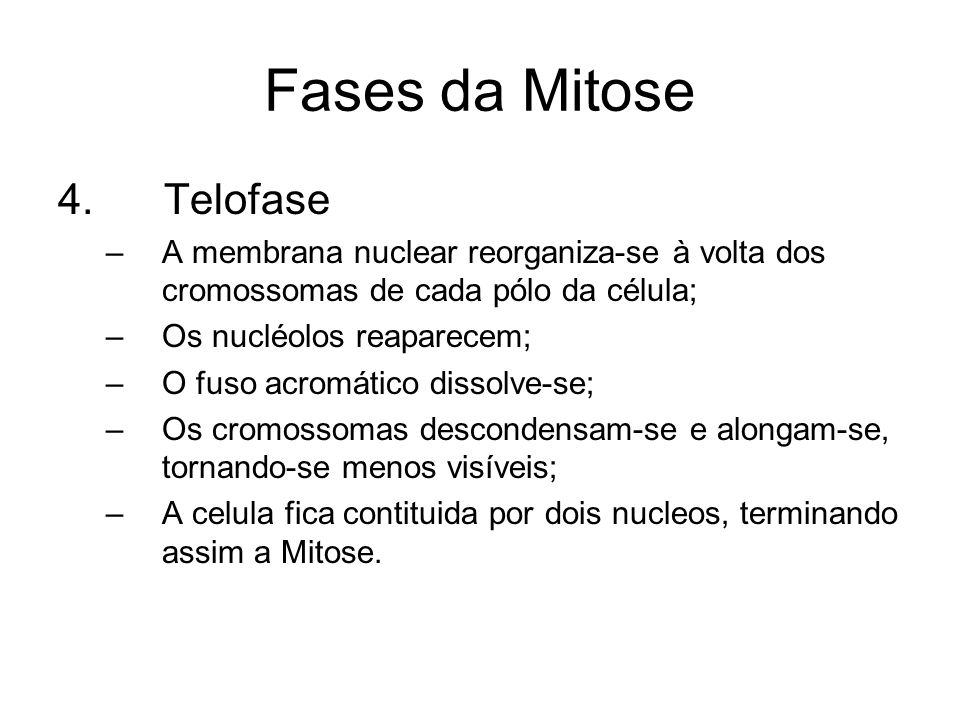 Fases da Mitose 4. Telofase