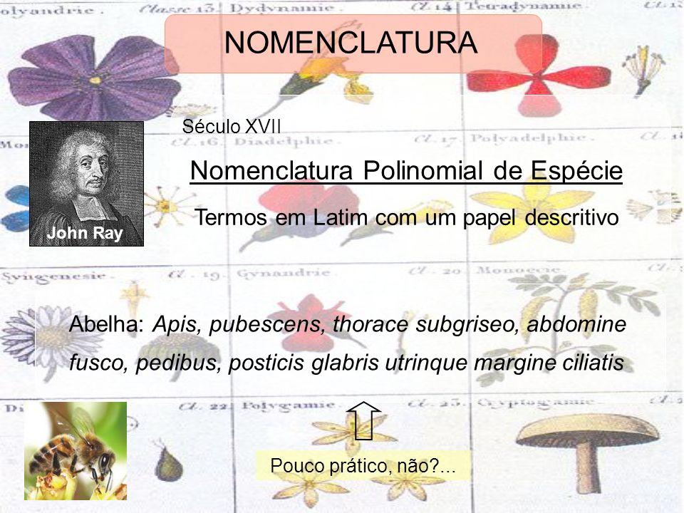 NOMENCLATURA Nomenclatura Polinomial de Espécie