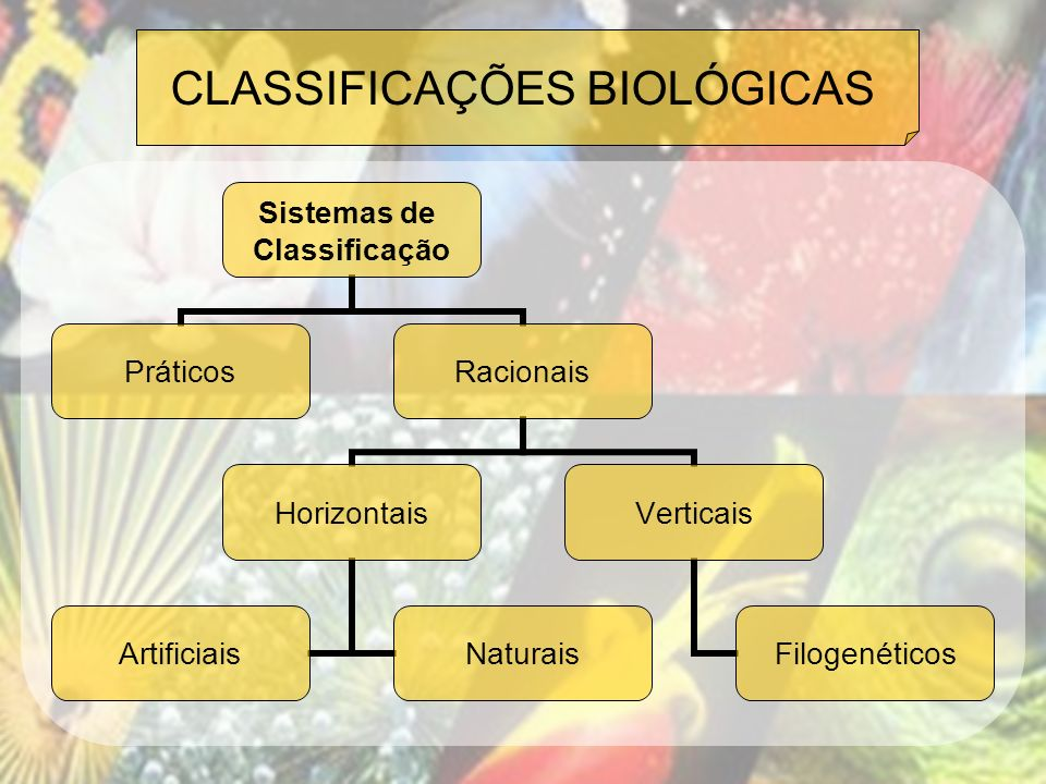 CLASSIFICAÇÕES BIOLÓGICAS