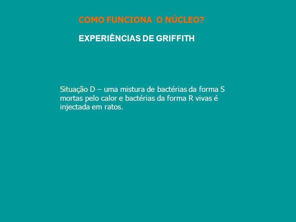 EXPERIÊNCIAS DE GRIFFITH