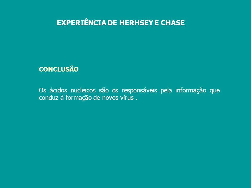 EXPERIÊNCIA DE HERHSEY E CHASE
