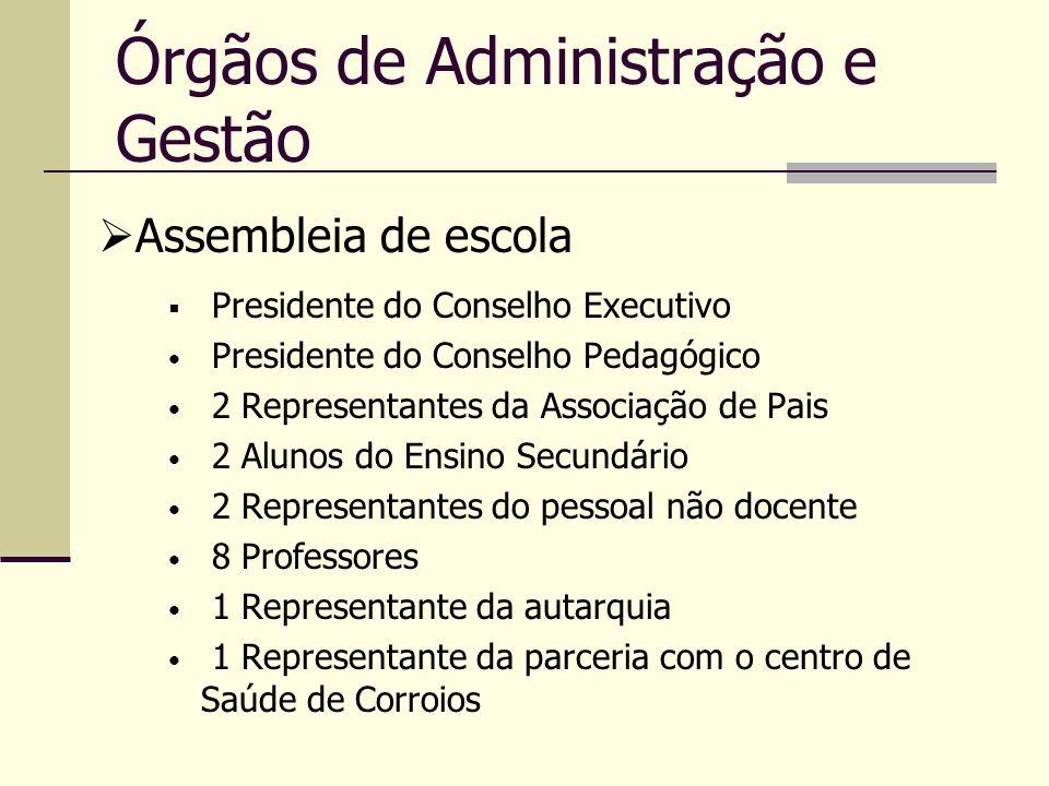 Órgãos de Administração e Gestão