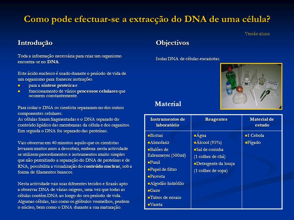 Como pode efectuar-se a extracção do DNA de uma célula