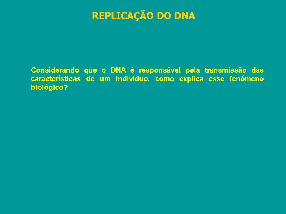REPLICAÇÃO DO DNA Considerando que o DNA é responsável pela transmissão das características de um individuo, como explica esse fenómeno biológico