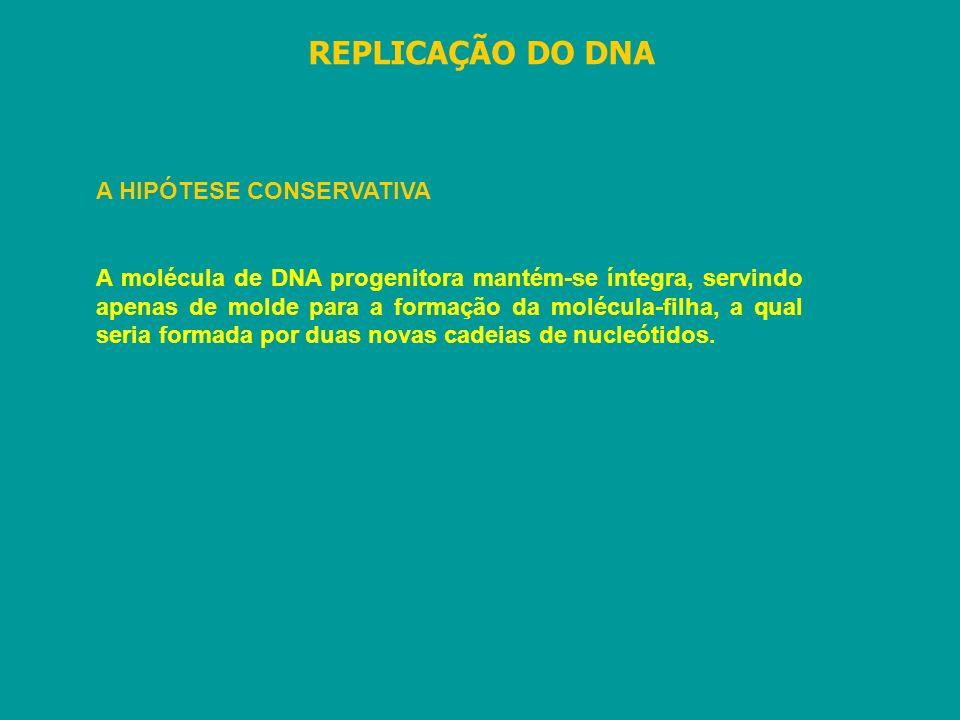 REPLICAÇÃO DO DNA A HIPÓTESE CONSERVATIVA