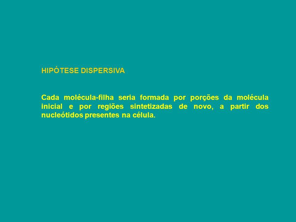 HIPÓTESE DISPERSIVA