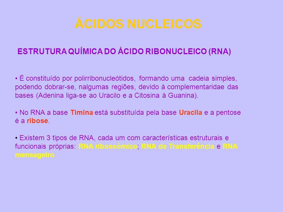 ÁCIDOS NUCLEICOS ESTRUTURA QUÍMICA DO ÁCIDO RIBONUCLEICO (RNA)