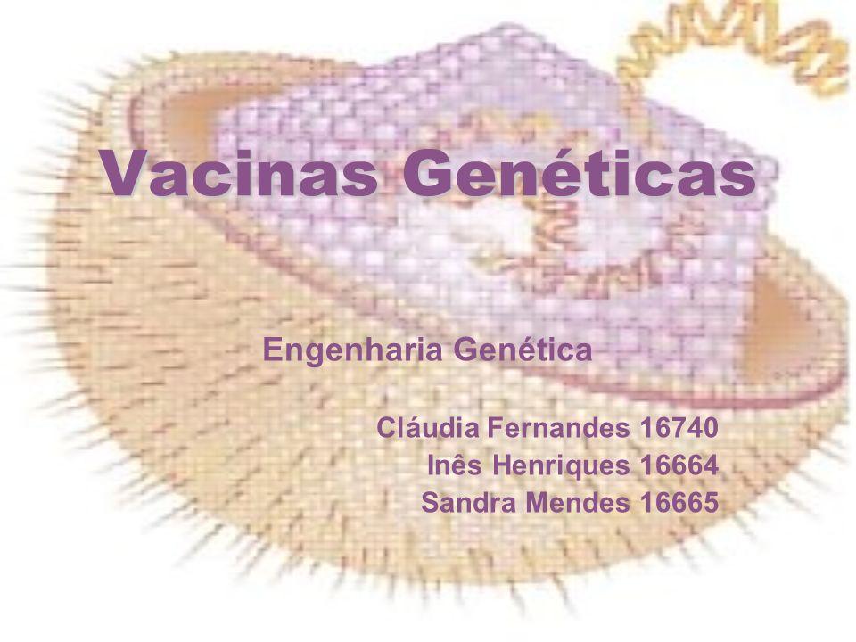 Vacinas Genéticas Engenharia Genética Cláudia Fernandes 16740